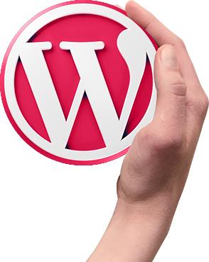 WordPress Theme programmieren